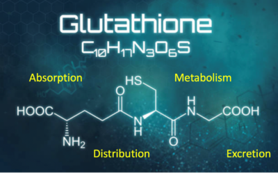 Glutathione Helps the Body to Remove Mycotoxins and Other Toxic Chemicals