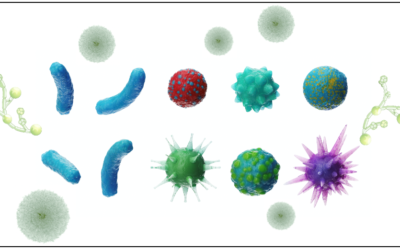 Mold, Bacteria, Candida, and Virus Co-Infections