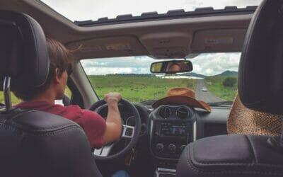 Road trip? Make it mold free.